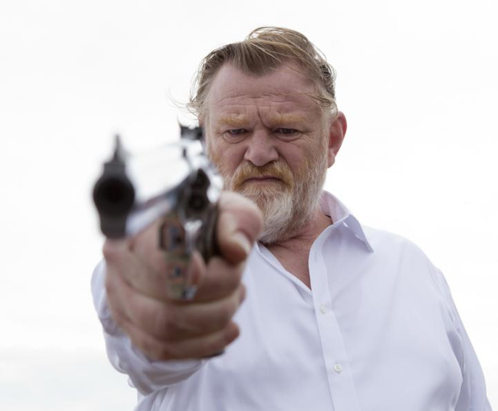 Calvary the Movie, Gleeson
